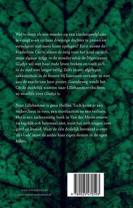 Naar Lillehammer : roman