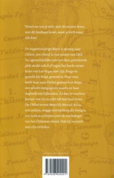 Het negende schrift van Maya