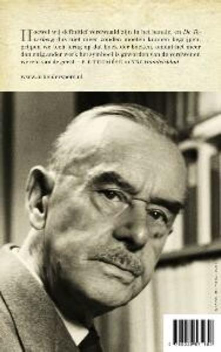 De Toverberg : roman