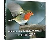 Vogels van tuin, parken stad in Europa