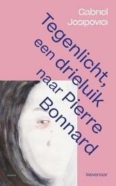Tegenlicht, een drieluik naar Pierre Bonnard : roman