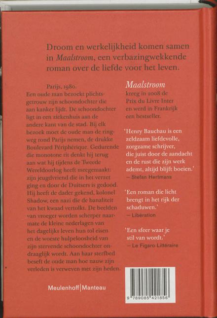 Maalstroom : roman