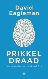 Stroom : over ons voortdurend veranderende brein
