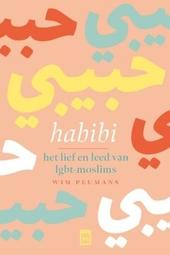 Habibi : het lief en leed van lgbt-moslims