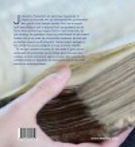 Heilig Schrift : tanach, bijbel, koran