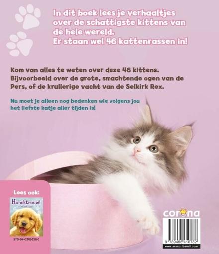 Poeslief! : 46 schattige kittens