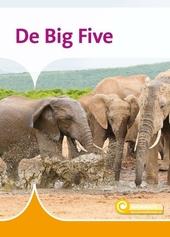 De big five