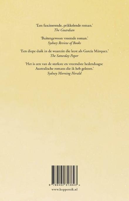 Het verdwijnen : roman