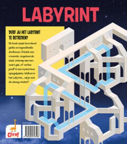 Labyrint : een mega doolhovenboek